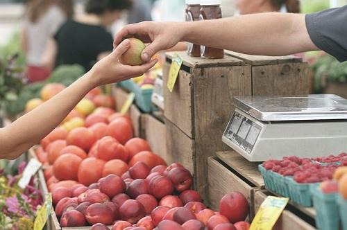 apples-1841132_640