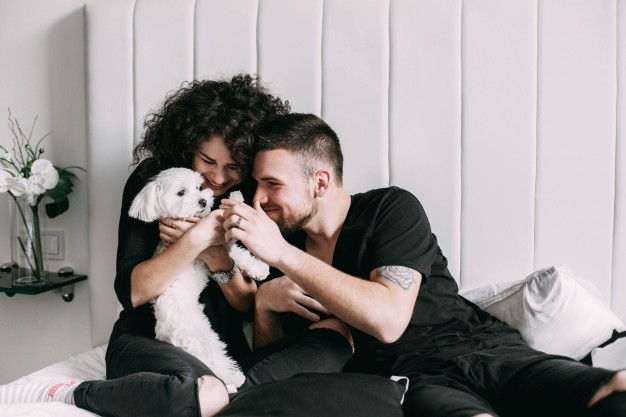 man-woman-black-play-with-little-white-dog-bed_1304-3280